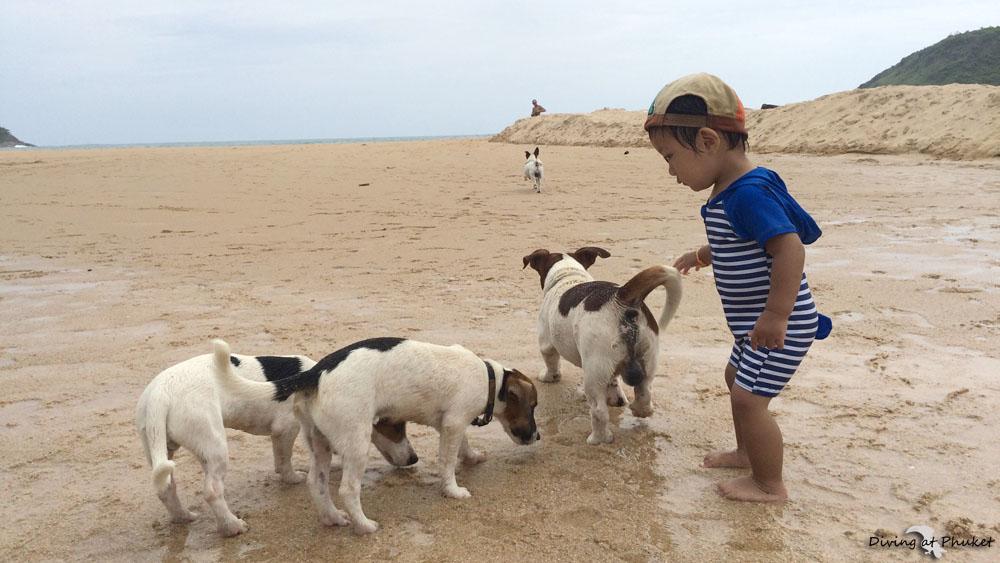 ナイハーンビーチで子供と犬